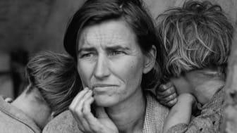 Migrant Mother. Foto: Dorothea Lange