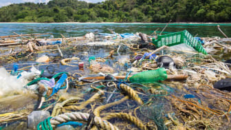 The largest source of plastic ingestion is drinking water, says new WWF report on microplastics