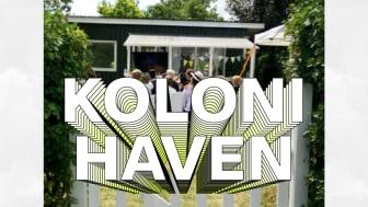 Kolonihaven 2019