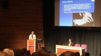 Linda Wright föreläser för Europas främsta hästkirurger vid European College of Veterinary Surgeons årliga kongress som just nu pågår i Edinburgh, Skottland.