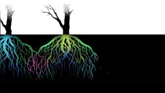 Glängtan – hologram och poetisk vetenskap på Backa Teater