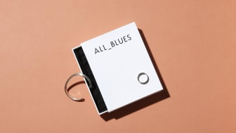 Designing a visually-driven online experience for All Blues
