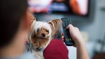 Frekvensförändringar för tv-sändningar i delar av Västra Götalands län den 6 okt