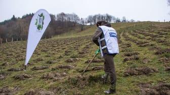 Pădurea JYSK – povestea merge mai departe, chiar și în pandemie