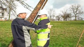 """Störungen im Stromnetz des Bayernwerks - wie hier durch den Orkan """"Sabine"""" im Februar 2020 - können Netzkunden jetzt auf störungsauskunft.de einsehen oder melden."""