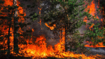 Räddningstjänsten Mälardalen avråder dig från att elda utomhus