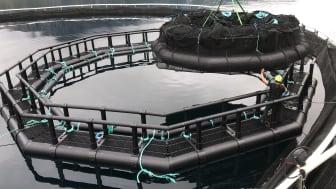 iFarm components at sea site