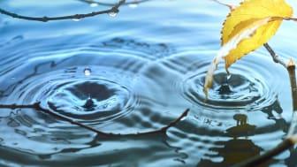 Ringe i vandet, sammenhæng