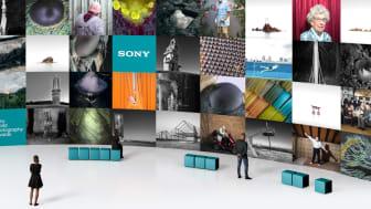 Virtuelle Galerie: SWPA 2020