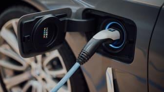 """Mit ihrem """"Schutz für E-Fahrzeuge"""" trägt die SIGNAL IDUNA dem Trend zur Elektromobilität Rechnung.  Foto: Chuttersnap/unsplash.com"""