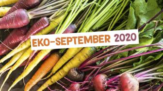 EKO-september 2020