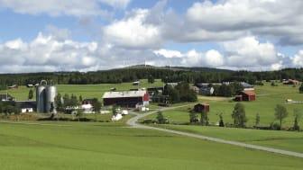 KSLAT nr 5-2020: Äganderätten och de gröna näringarna. Foto: Marianne Eriksson.