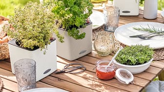 Outdoor Living mit LECHUZA