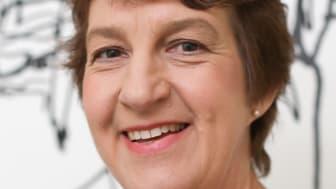 Elisabet Falemo, Elsäkerhetsverkets generaldirektör