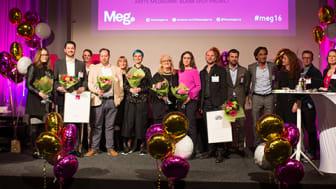 Alla vinnare vid MegAward 2016.