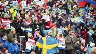 Ett år sedan alpina VM i Åre – nu gör sig Åre redo för nya världscuptävlingar 12-15 mars