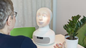 Tengai - the job interview robot