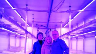 I Växtkammaren sker det högteknologiska jordbruket
