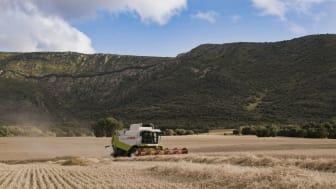 Compromiso Harmony, el programa de cultivo sostenible de Mondelēz International, supera las 23.000 toneladas de trigo sostenible en la cosecha de este año