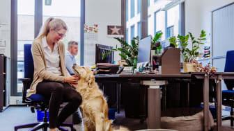 """#MeinTierbleibtbeimir: Bei Fressnapf ist """"Kollege Hund"""" seit jeher herzlich willkommen. Schon vor der Pandemie """"arbeiteten"""" rund 120 Hunde Tag für Tag am Campus. Nach Corona werden es noch ein paar mehr sein. Foto: Fressnapf Holding SE/Yvonne Ploenes"""