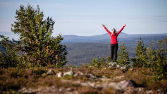 Destination Lofsdalen och projekt Vision Lofsdalen nominerade till Årets Turismföretagare 2020