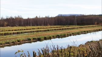 Framsidesbild SVU-rapport 2016-16. Hede fällningsdammar med Sonfjället i bakgrunden. Foto: Erik Norin, Sweco Environment