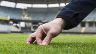 Nya hybridgräsmattan står redo för spel