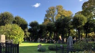 Johannes kyrkogård 2019-9.jpg