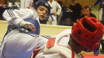 SM-taekwondo
