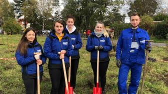 10.000 Bäume für die Lausitz