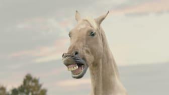 ATG satsar på sjungande hästar