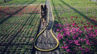 Att omges av växter och djur är en lisa för själen, hos Jakobssons i Ödåkra får du både och!