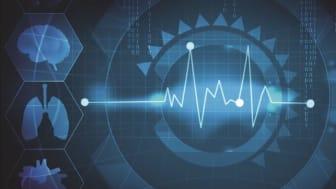 Den digitale helsetjenesten - boklansering