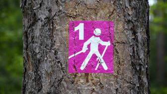 Bewegung ist Teil des Programms zur Stressbewältigung und Prophylaxe z.B. bei Rückenproblemen. © pixabay.com
