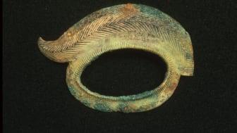 Et stykke af en pragthjelm er en af brikkerne i fortællingen om Gevninge og Lejre og deres betydning i vikingetiden. Foto: Museumskoncernen ROMU