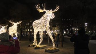City i Samverkan önskar God Jul och Gott Nytt År