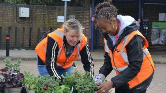 Govia Thameslink Railway staff have been busy brightening up the station with floral displays - more images available to download below