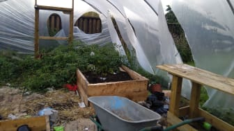 The damaged polytunnel belonging to The Base at People's Park Ballymena