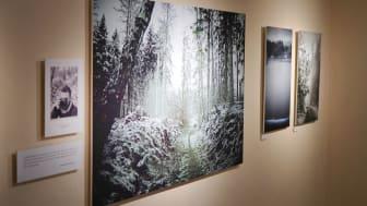 """Glimt fra udstillingen """"Langt fra Verden"""" på Mothsgården i Søllerød."""