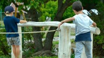 Grön skolmiljö - grönskande lekområde med pedagogiskt material