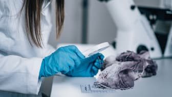 Forensic science on trial