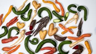 Martin & Servera lanserar ny digital plattform för att rädda matvaror och halvera svinnet