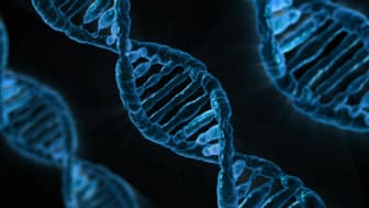 Deoxyribonucleic acid (DNA) is a molecule found in the nucleus of cells and carries the 'instructions' for the development and functioning of living organisms. Analyzing DNA is useful for a number of vital applications.