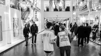 Amnesty volontärer
