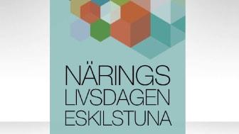 Näringslivsdagen Eskilstuna - möten som stimulerar och utvecklar