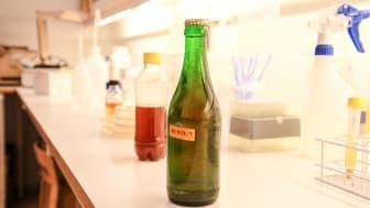 Första svenska öljästen ger ny karaktär åt öl- och vinbranschen