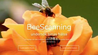 Nya framgångar för Björn Lagermans BeeScanning