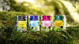 Arvid Nordquist lanserar klassiskt te med Skandinavisk Twist!