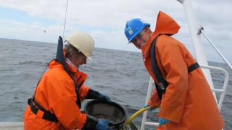 Prøvetaking dyreliv på blautbotnen