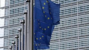 EU:s Green Deal sätter energipriserna i rörelse // Veckans kommentar om elmarknaden v.37 2020